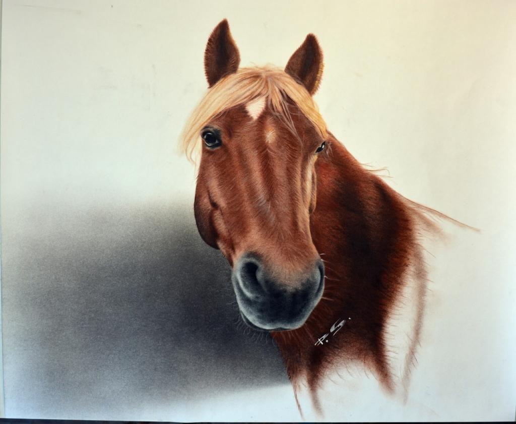 Pferdeportrait von Foto 3D